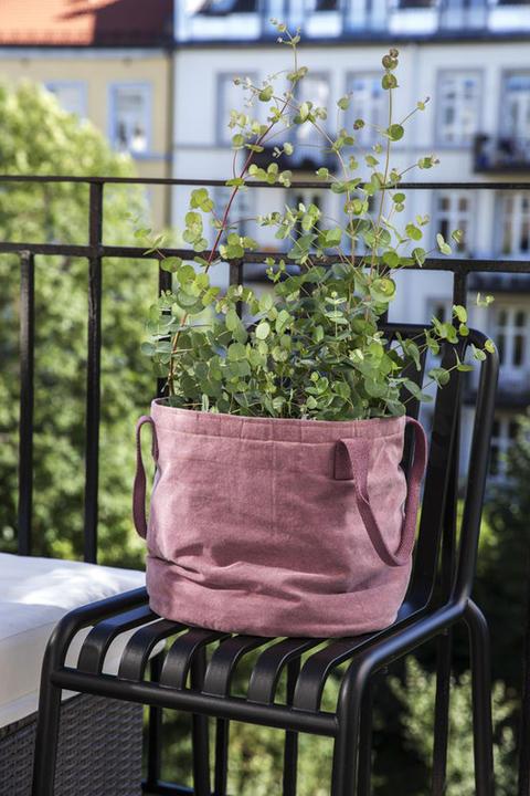 potte-grow-in-1