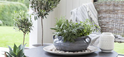 potte-grow-in-8